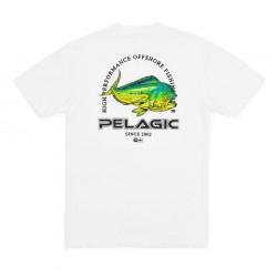 Camiseta Premium Flying Dorado